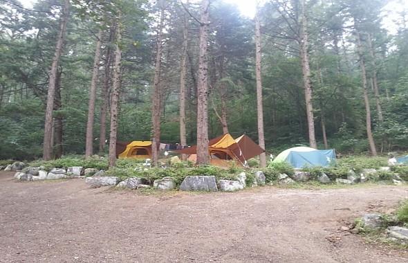 캠핑장(백팩킹형)